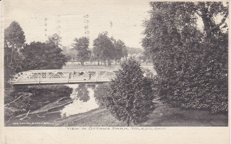 View In Ottawa Park, TOLEDO, Ohio, PU-1947