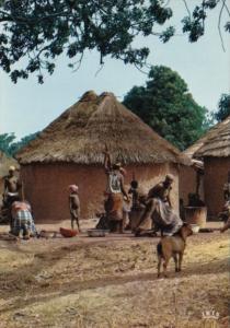 Cameroun Village Scene Preparing A Meal