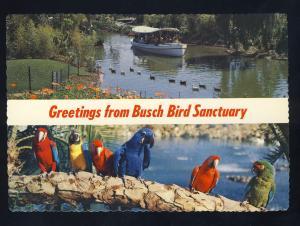 Van Nuys, California/CA Postcard, Busch Bird Sanctuary, Colorful Parrots