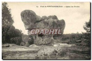 Old Postcard Forest of Fontainebleau Sphinx Druids