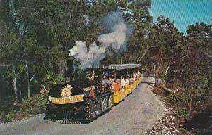 Florida Miami Unique Tour Trains