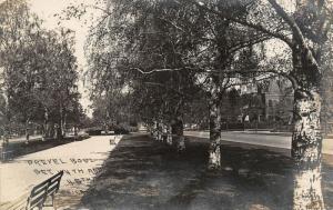 Chicago-North Kenwood IL~Birch Trees~Drexel Blvd~nr KCPHS Prep School RPPC 1909