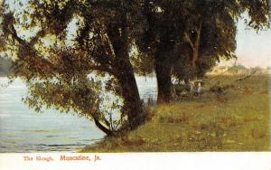 Muscatine Iowa~Trees Lean Out Over The Slough At Its Widest~c1910 Wheelock PC