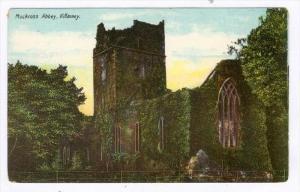 Muckross Abbey, Killarney, County Kerry, Ireland, 1900-1910s