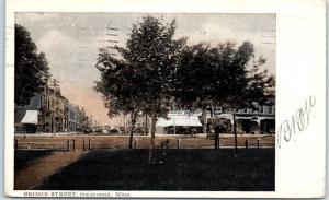 Owatonna, Minnesota Postcard BRIDGE STREET Downtown / Park Scene 1910 Cancel