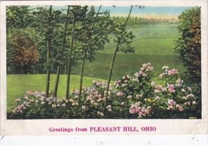 Ohio Greetings From Pleasant Hill 1938