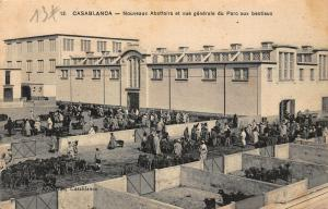 Morocco Casablanca New Abattoirs and General View of the Bestial Park Postcard