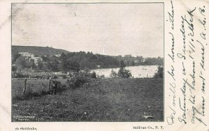 View of Loch Sheldrake, Sullivan County, New York, Early Postcard, Used in 1905