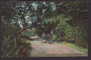 Horse Carriage,Washington Road,Near Westminster,MD Postcard