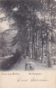 Gruss aus BERLIN, Tree-lined sidewalk, Germany, PU-1904