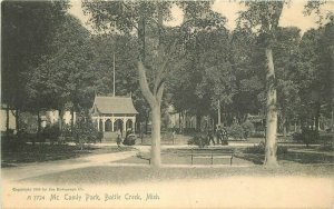 Battle Creek Michigan Mc Calmy Park Rotograph undiivided1905 Postcard 21-8122