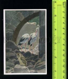 222446 Gauff Tale story Caliph Stork Paul HEY OWL Tobacco