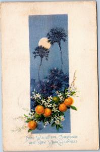 Best Wishes Christmas New Year 3039 palm trees oranges