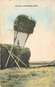 Sheridan Montana~Big Rig Haying~Farmer on top Mound~1910 B&W Postcard