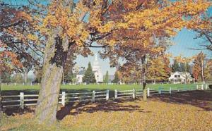 The Village Of Craftsbury Common Vermont