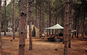 Waupaca Wisconsin Hartman Creek State Park Camping Vintage Postcard K98193
