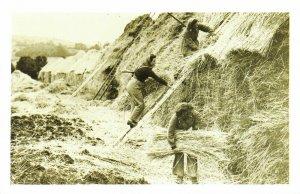 Nostalgia Postcard WW2 1943 Land Girls Thatching Ricks Reproduction Card NS24