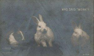 RP: Rabbits Who said WORK , 1909