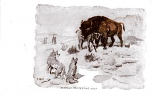 Charlie Russell, Buffalo Protecting Calf Divided Back, c. 1912