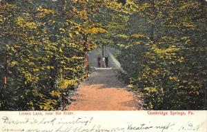 Cambridge Springs PA~Trio On Lovers Lane~Near Rider Hotel~Look Inviting?~1907 PC