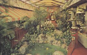 Garden Cafeteria , ST. PETERSBURG , Florida , 50-60s