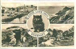 VINTAGE POSTCARD: GB : Guernsey