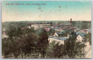 St James Minnesota~Handcolored: Flour & Feed Store~Neighborhoods c1910 Postcard