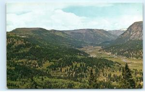 North Fork Canejos River Lamanga Pass Antonito Colorado CO Vintage Postcard D38