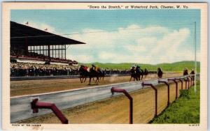 Chester, West Virginia Postcard WATERFORD PARK Horse Racing Scene Linen 1940s