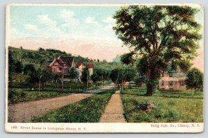 Livingston Manor New York~Main Street~Lots of Trees~c1905