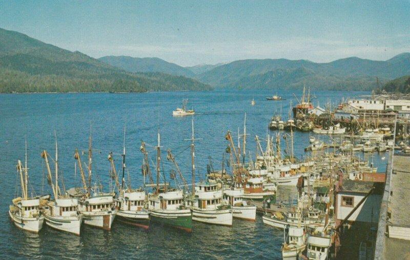 PRINCE RUPERT , B.C. , Canada , 1950-60s ; Fishing Fleet