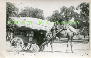 1915 Aligarh Uttar Pradesh India RPPC: Camel Pulling Licensed Wagon