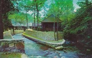 Tennessee Smoky Mountain Twin Island Motel on the Little Pigeon River In The ...