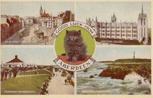 ABERDEEN , Scotland , 1920-30s ; Black Cat