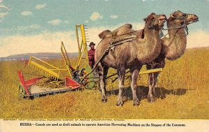 Camels, American Harvesting Machines Russia Farming Unused