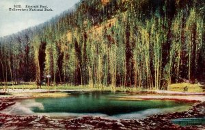 WY - Yellowstone Nat'l Park. Emerald Pool