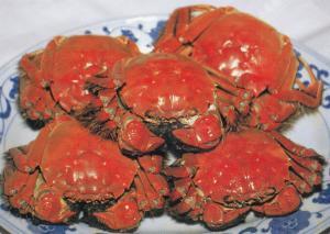 Shanghai Restaurant Dish Of Chinese Crab Food Postcard