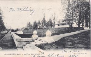 GREENFIELD, Massachusetts, PU-1905;  View on High Street