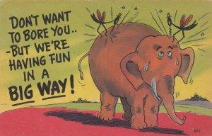 Bugs on an Elephant , 1930-40s