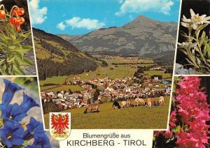 Blumengruesse aus Kirchberg Tirol Gesamtansicht Flowers Edelweiss
