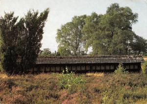 GG7824 korbbienenstand im naturschutzgebiet luneburger heide    germany