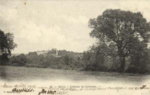 CPA MEZIN Chateau de Carboste Lot et Garonne (89840)