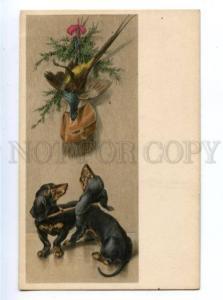 156457 After HUNT Dogs DACHSHUND Vintage M.M. VIENNE PC