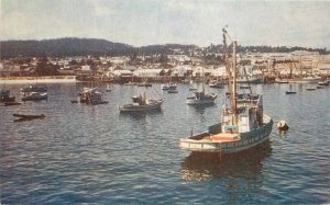 Fishing Fleet at Anchor Picturesque 1940s Postcard Wesco 8876