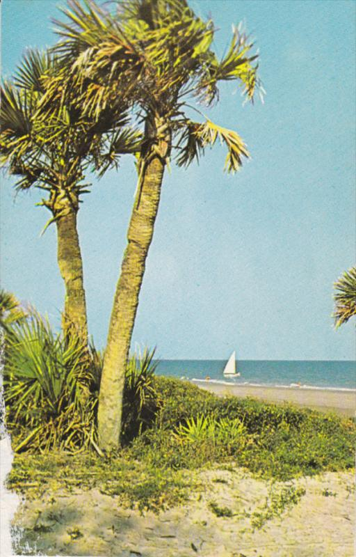 HILTON HEAD, South Carolina, 1940-1960's; Ocean Sailing, William Hilton Inn