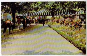 Belmont Park, Belmont NY
