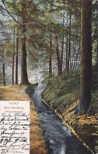 Philosophenweg, Harz, Bad Harzburg (Lower Saxony), Germany, PU-1905