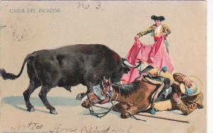 Bull Fight Caida Del Picador Mexico