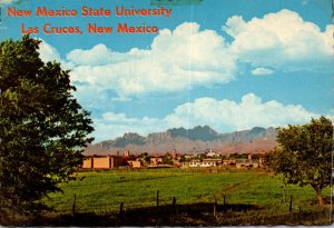 New Mexico Las Cruces University Park New Mexico State University