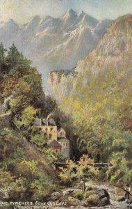 THE PYRENEES , Eaux Chaudes , France , 1900-10s ; D'Ossau Valley ; TUCK 7395